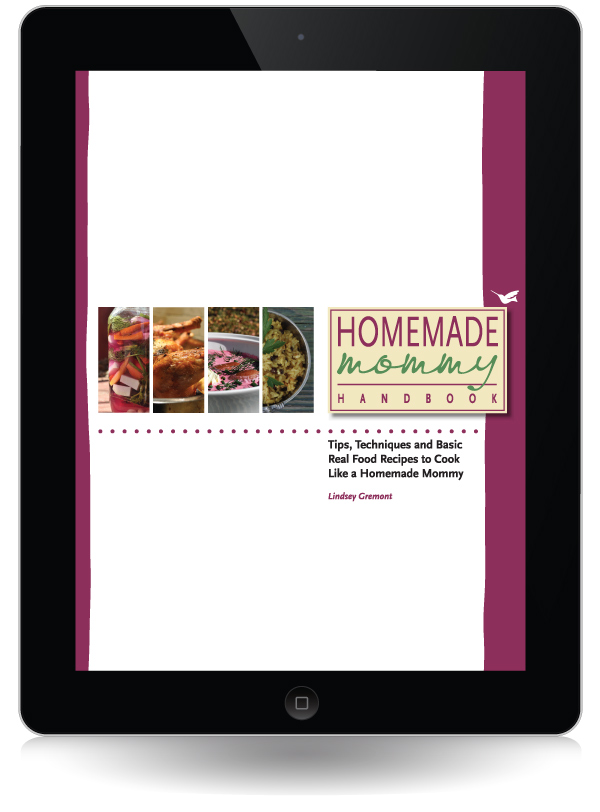 Homemade Handbook on iPad