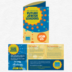 SSDS 2012 brochure